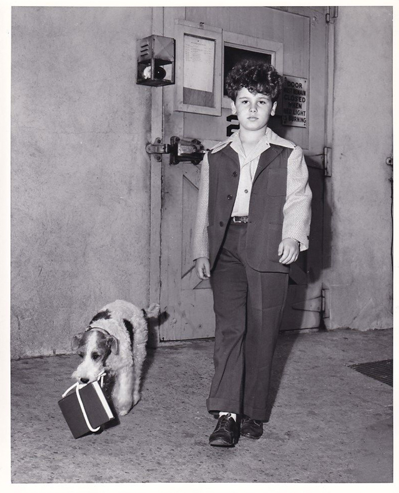 song of the thin man production still photo dean stockwell with asta